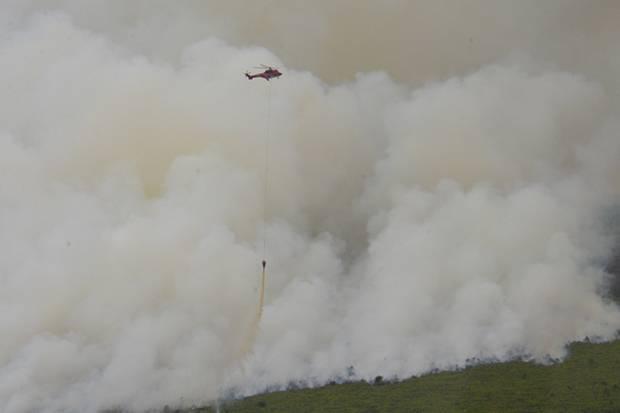 https: img-z.okeinfo.net content 2019 03 12 340 2028704 10-helikopter-dan-1-pesawat-dikerahkan-untuk-atasi-kebakaran-hutan-riau-lPxKCIxmoq.jpg