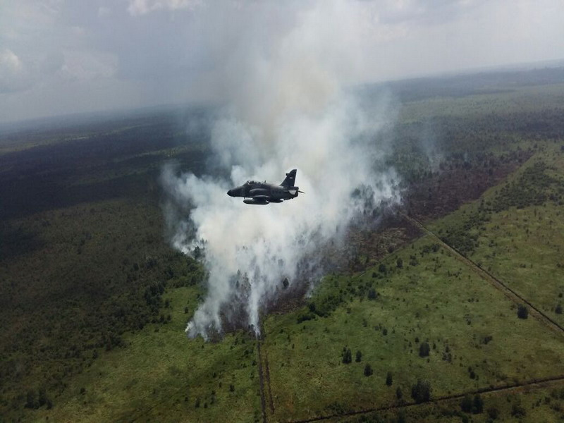https: img-z.okeinfo.net content 2019 03 12 340 2028803 sudah-15-8-ton-garam-ditebar-di-langit-riau-untuk-padamkan-kebakaran-hutan-hCmsrGYRQZ.jpg