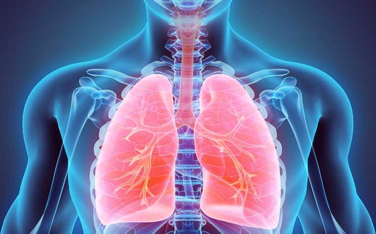 https: img-z.okeinfo.net content 2019 03 24 481 2034215 hari-tuberkulosis-dunia-kenali-lebih-jauh-penyakit-mematikan-yang-mengancam-indonesia-AuH8hqIpj0.jpg