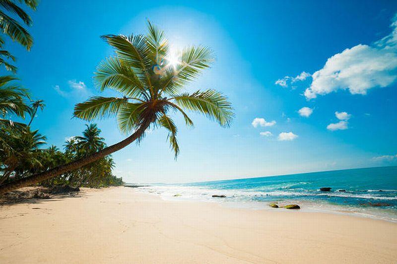 https: img-z.okeinfo.net content 2019 05 13 406 2054957 kenapa-teluk-maya-lokasi-syuting-film-the-beach-ditutup-hingga-2021-tdXWs7yNUU.jpg