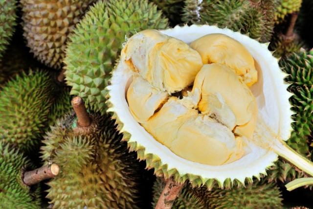 https: img-z.okeinfo.net content 2019 05 15 18 2056176 gara-gara-durian-seluruh-pengunjung-perpustakaan-dievakuasi-AE2k97PKig.jpg