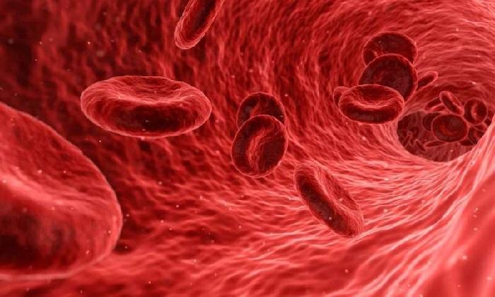 https: img-z.okeinfo.net content 2019 06 04 56 2063629 studi-temukan-tingginya-tingkat-kanker-darah-mematikan-di-kota-kota-industri-ontario-2ZS8CJwNOw.jpg