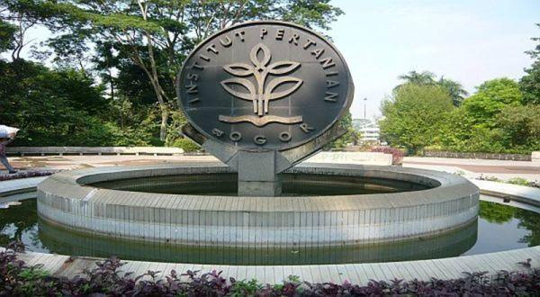 https: img-z.okeinfo.net content 2019 06 19 65 2068260 peringkat-ipb-naik-100-tingkat-dalam-daftar-kampus-terbaik-dunia-tOi8OtutvS.jpg