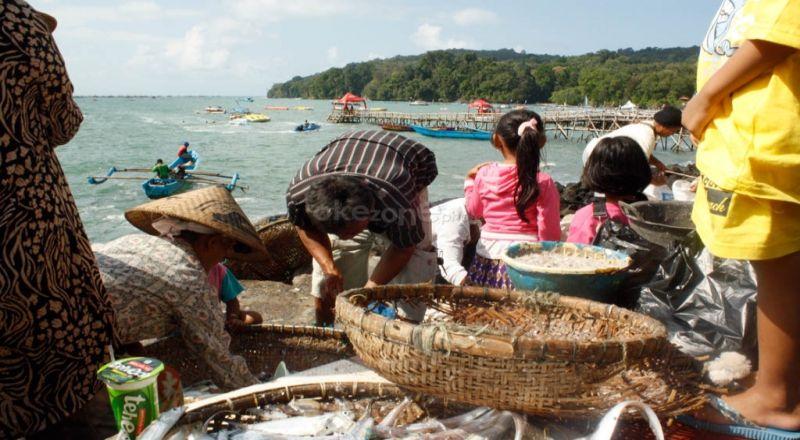 https: img-z.okeinfo.net content 2019 07 04 320 2074689 ekspor-perikanan-indonesia-melonjak-24-di-semester-i-2019-vdI3d2m5Ty.jpg
