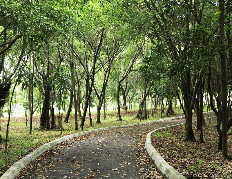https: img-z.okeinfo.net content 2019 07 09 470 2076743 hutan-kota-kemayoran-ditargetkan-rampung-november-2019-yWD3vzE3zT.jpg