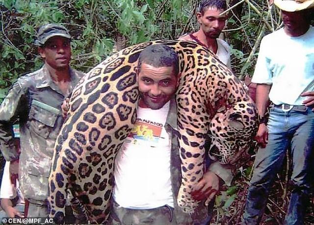 https: img-z.okeinfo.net content 2019 07 10 18 2077245 dokter-gigi-yang-telah-membunuh-1-000-jaguar-akhirnya-tertangkap-6TZwtxC6If.jpg