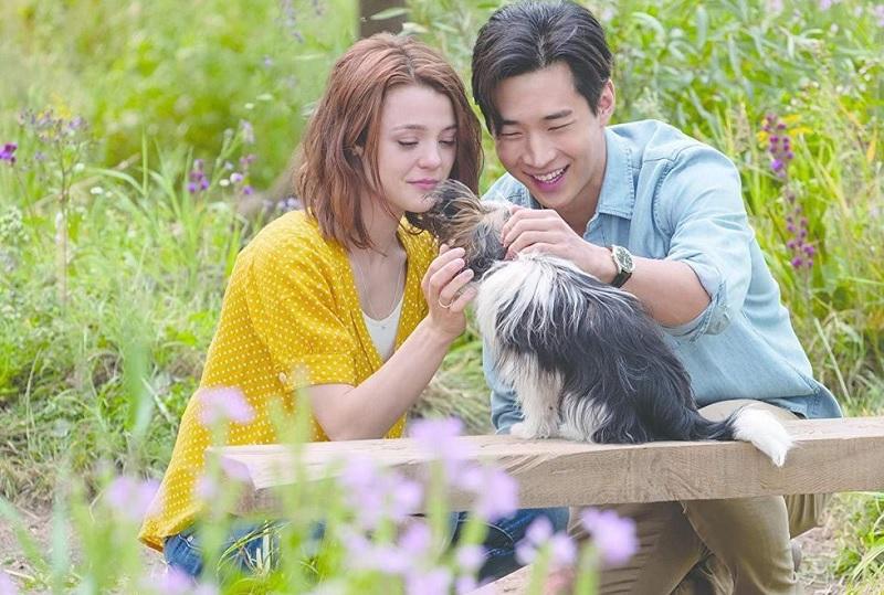 https: img-z.okeinfo.net content 2019 07 11 206 2077761 a-dog-s-journey-ajarkan-indahnya-persahabatan-manusia-dan-anjing-xGgCNtV7kz.jpg