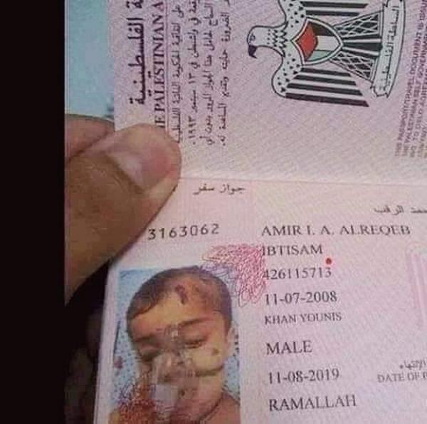 https: img-z.okeinfo.net content 2019 07 19 18 2081037 warganet-terenyuh-melihat-foto-paspor-bocah-palestina-dengan-alat-bantu-pernafasan-lgIYrviL1a.jpg