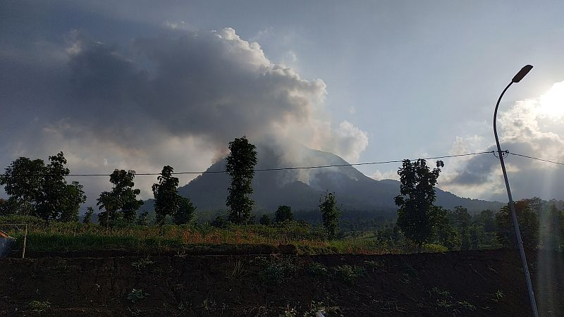 https: img-z.okeinfo.net content 2019 07 23 519 2082287 fakta-fakta-kebakaran-hutan-gunung-panderman-yang-terus-meluas-u3yCJgtKRJ.jpg