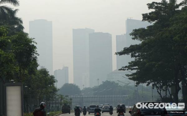 https: img-z.okeinfo.net content 2019 07 29 338 2085027 walhi-tuding-pemprov-dki-lamban-tangani-polusi-udara-d6Vdw84d9v.jpg