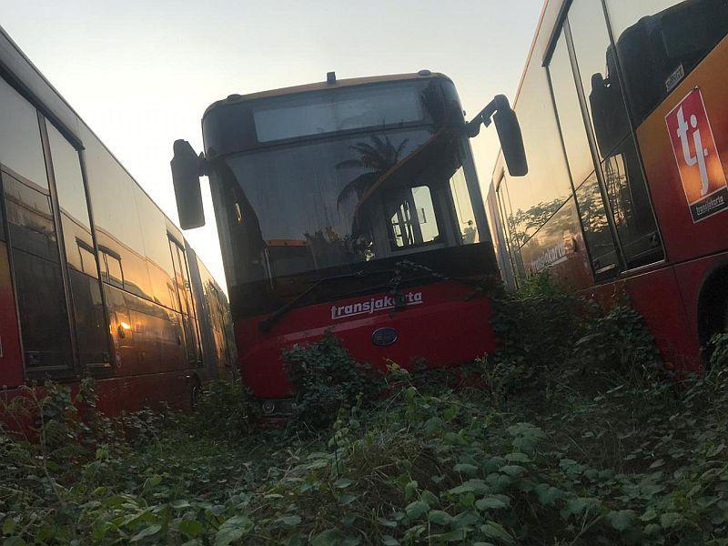 https: img-z.okeinfo.net content 2019 07 30 338 2085364 bus-bus-transjakarta-terbengkalai-di-ciputat-catnya-sudah-memudar-8fcWZcUcdn.jpg