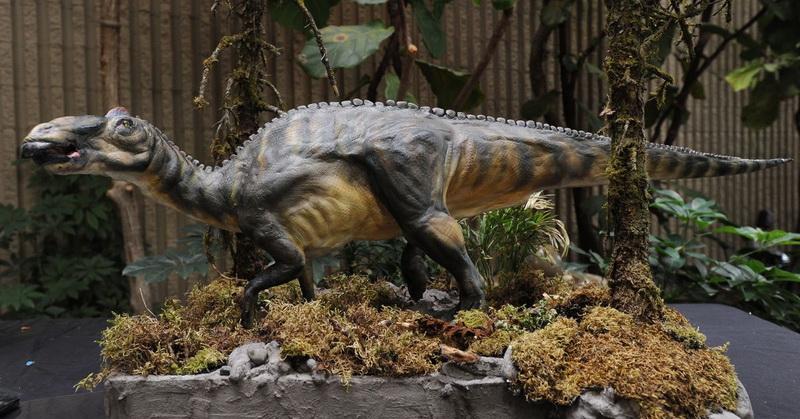 https: img-z.okeinfo.net content 2019 07 31 612 2085783 bocah-10-tahun-temukan-11-telur-dinosaurus-ini-kisahnya-olIwm2ou0t.jpg