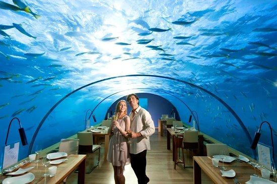https: img-z.okeinfo.net content 2019 08 06 298 2088270 5-restoran-termahal-di-dunia-sekali-makan-bayar-rp31-juta-tGrtlW2i3t.jpg
