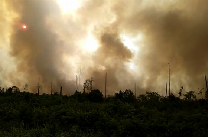 https: img-z.okeinfo.net content 2019 08 09 340 2089931 1-400-hektare-hutan-dan-lahan-di-bengkalis-terbakar-8r75qp76dK.jpg