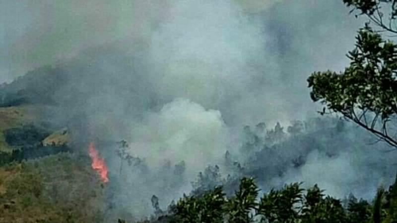 https: img-z.okeinfo.net content 2019 08 19 519 2093689 15-hektare-lahan-di-gunung-arjuno-terbakar-1CznM1SdLe.jpeg