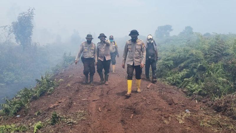 https: img-z.okeinfo.net content 2019 08 22 340 2095150 kebakaran-perusahaan-sawit-di-inhu-meluas-hingga-50-hektar-mKqrzoJ3dX.jpg