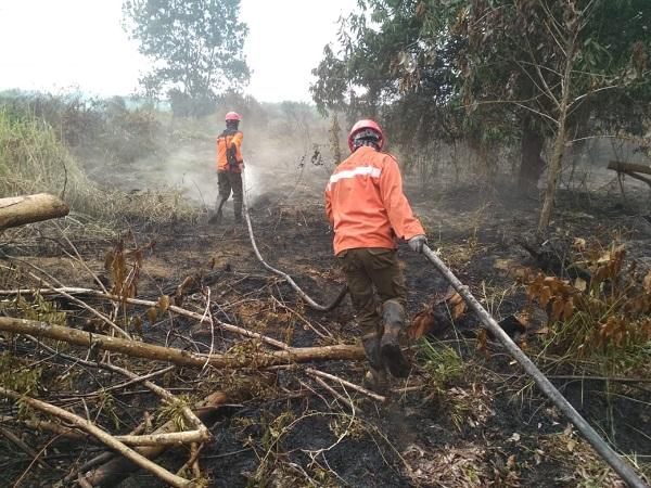 https: img-z.okeinfo.net content 2019 08 23 340 2095555 anggota-manggala-agni-meninggal-saat-padamkan-kebakaran-hutan-4khpe4J0AM.jpg