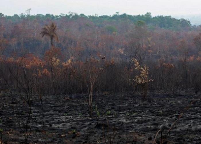https: img-z.okeinfo.net content 2019 08 26 614 2096689 bencana-alam-di-muka-bumi-telah-tertulis-di-alquran-1400-tahun-lalu-o1rMKRwYV8.jpg