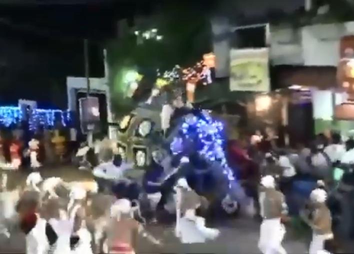 https: img-z.okeinfo.net content 2019 09 09 18 2102510 gajah-mengamuk-di-festival-keagamaan-sri-lanka-lukai-17-orang-FD0YpVi5Cw.jpg