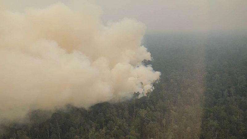 https: img-z.okeinfo.net content 2019 09 09 340 2102604 ketua-dprd-kapolda-jambi-pantau-kebakaran-hutan-via-udara-a9m5mBi2EF.jpg