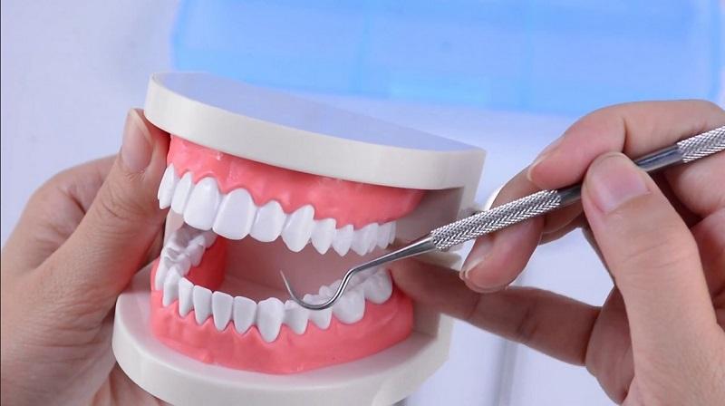 https: img-z.okeinfo.net content 2019 09 13 481 2104670 bahan-baku-dan-alat-penunjang-kesehatan-gigi-produksi-dalam-negeri-masih-sangat-minim-Be4IXgVone.jpg
