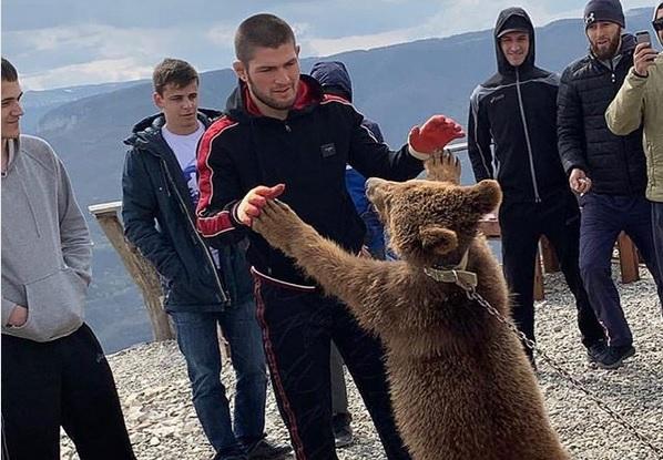 https: img-z.okeinfo.net content 2019 09 17 43 2105716 khabib-dikecam-gara-gara-duel-dengan-beruang-Np6XqENgdG.jpg