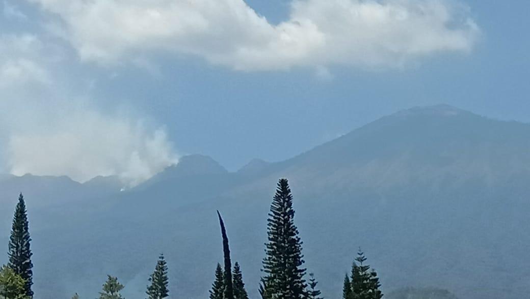 https: img-z.okeinfo.net content 2019 09 29 519 2110741 hutan-di-gunung-arjuno-kembali-terbakar-4pYpWlDuex.jpg