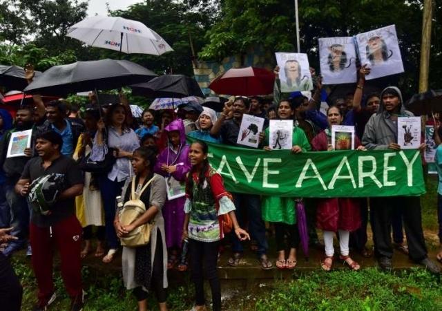 https: img-z.okeinfo.net content 2019 10 07 18 2113879 warga-mumbai-melawan-penebangan-hutan-kota-rDZsZh0XpI.jpg