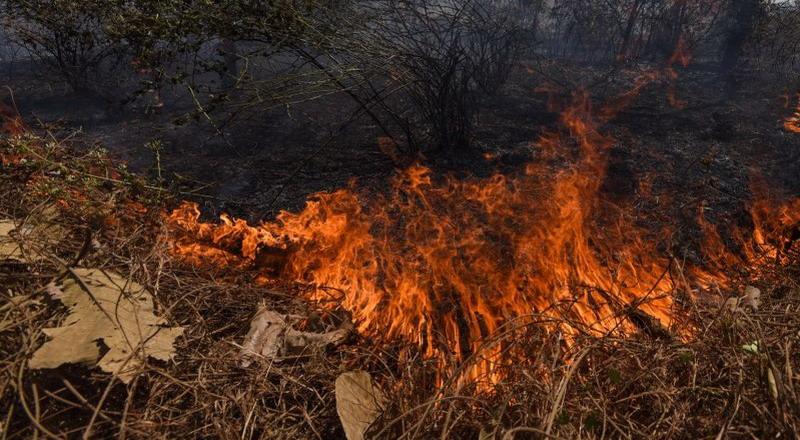 https: img-z.okeinfo.net content 2019 10 08 337 2114350 polisi-selidiki-penyebab-kebakaran-di-kawah-putih-u0equgi030.jpg