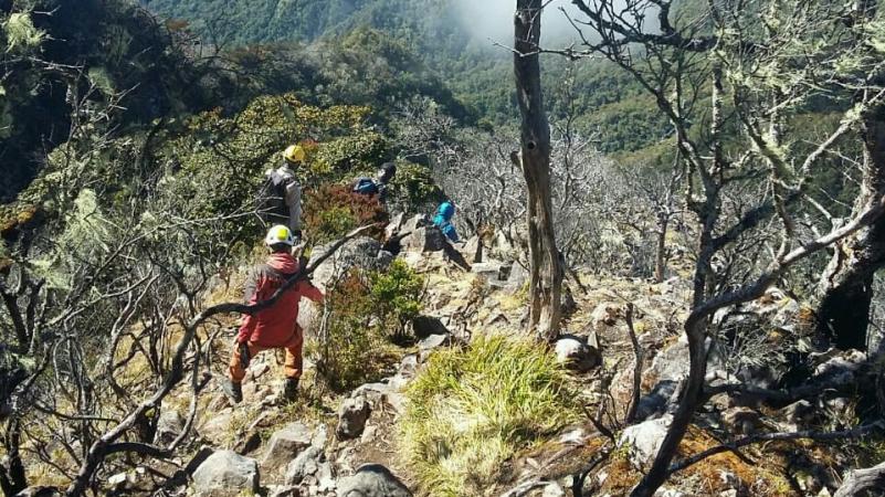 https: img-z.okeinfo.net content 2019 10 10 609 2115141 delapan-pendaki-madipala-unm-tersesat-di-gunung-lompobattang-By5AghKSTd.jpg