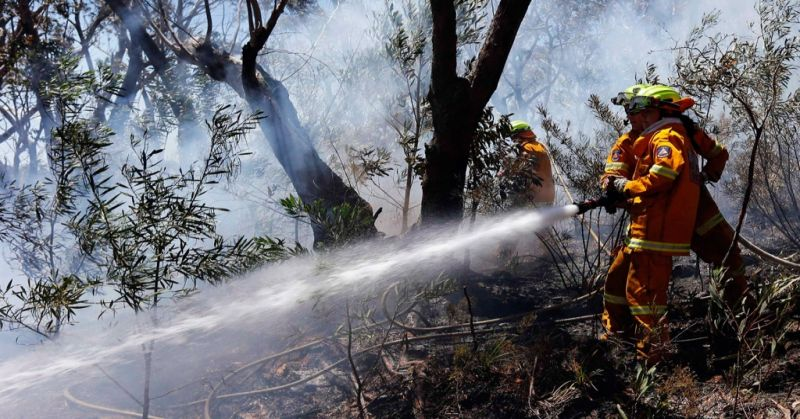 https: img-z.okeinfo.net content 2019 10 25 512 2121502 jalur-pendakian-gunung-lawu-ditutup-dampak-kebakaran-hutan-meluas-UEI8a9Js3C.jpg