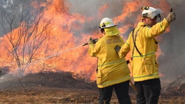 https: img-z.okeinfo.net content 2019 11 12 18 2128902 kebakaran-hutan-australia-wni-diimbau-tingkatkan-kewaspadaan-pi9rYWwNzK.jpg