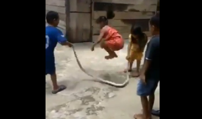 https: img-z.okeinfo.net content 2019 11 14 612 2129775 viral-bocah-main-lompat-tali-pakai-ular-netizen-badarawuhi-tertawa-melihat-ini-82ERf9Gxxr.jpg