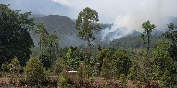 https: img-z.okeinfo.net content 2019 11 17 519 2130928 ini-penyebab-kebakaran-hutan-di-gunung-lawu-sulit-diatasi-prHZhcgEnI.jpg