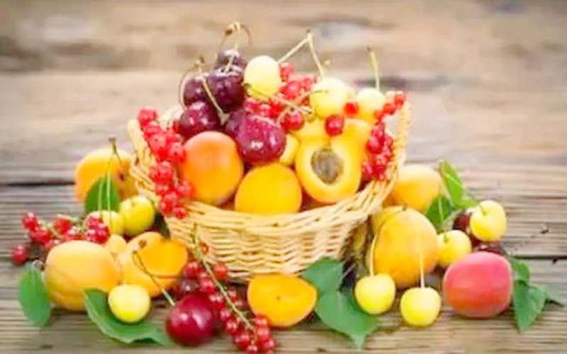 https: img-z.okeinfo.net content 2019 11 20 481 2132142 daftar-buah-terlarang-dan-aman-untuk-penderita-diabetes-3czcHHMfpP.JPG