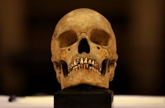 https: img-z.okeinfo.net content 2019 11 23 18 2133598 9-terngkorak-suku-sri-lanka-berusia-200-tahun-kembali-ke-tanah-leluhur-ij1FAGtNH0.jpg