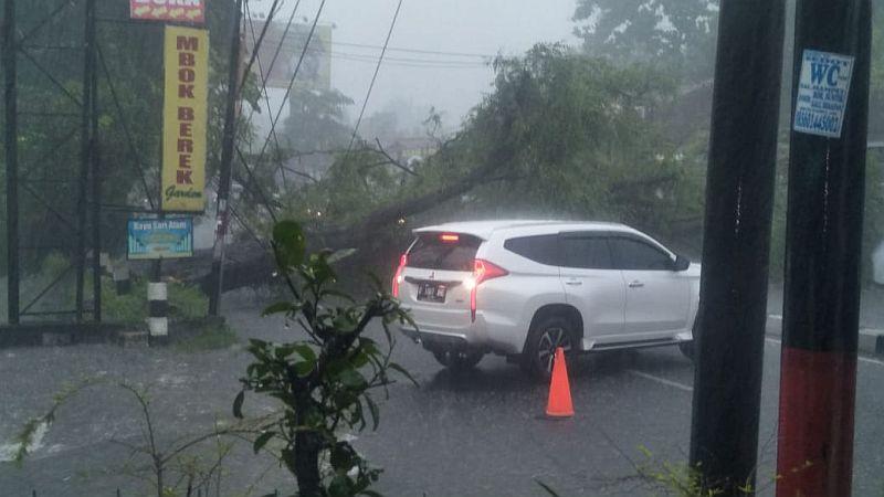 https: img-z.okeinfo.net content 2020 02 14 510 2168573 hujan-lebat-di-sleman-sejumlah-pohon-tumbang-hingga-atap-rumah-beterbangan-dh9TSCgsNw.jpg