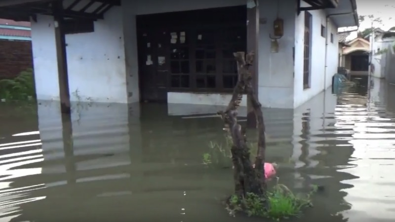 https: img-z.okeinfo.net content 2020 02 20 512 2171689 diguyur-hujan-sejumlah-wilayah-di-pati-kebanjiran-QLJNDo1M00.jpg