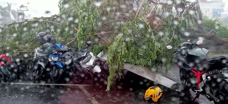 https: img-z.okeinfo.net content 2020 02 21 340 2172290 badai-menerjang-pontianak-pohon-bertumbangan-belasan-rumah-rusak-blBgT5h0id.jpg