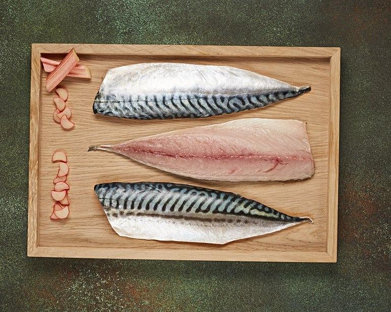 Ikan mackerel