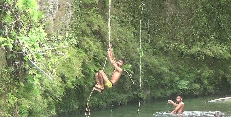 Wisata Akar Pohon Tanah Toraja (jufri okezone)