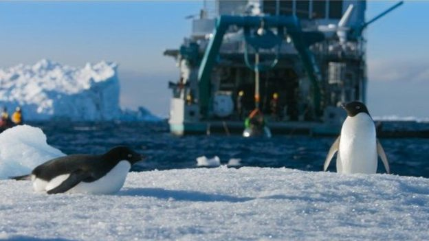 Penguin Adélie dan kapal M/V Alucia. (Dok BBC)