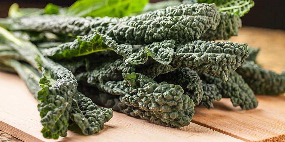 sayuran berdaun hijau