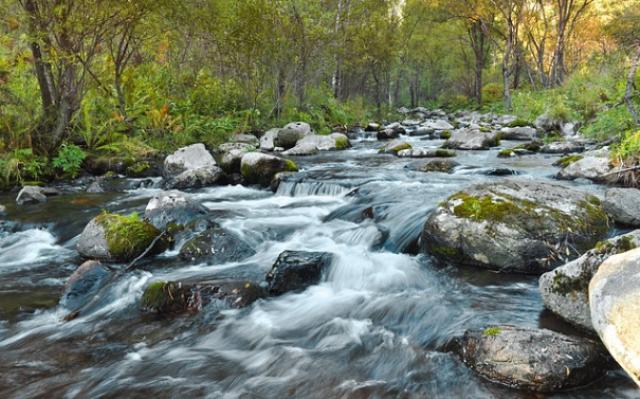 Ilustrasi sungai. (Foto: Ist)