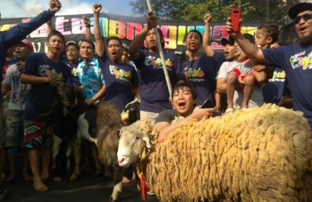 Tradisi kurban di Malang