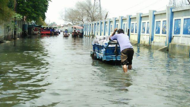 Banjir rob saat menerjang Jakut