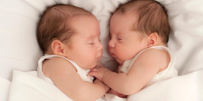 bayi kembar
