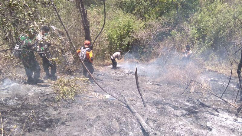 Pemadaman Api Gunung Sumbing (foto: Taufik/Okezone)