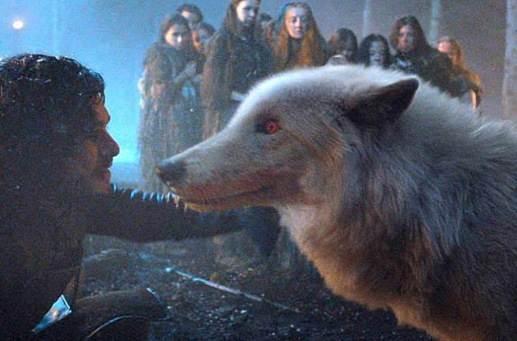 Jon Snow dan Ghost