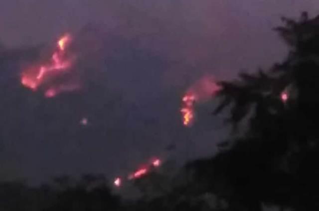 Kebakaran lahan dan hutan di Gunung Merbabu. (Foto: Okezone)